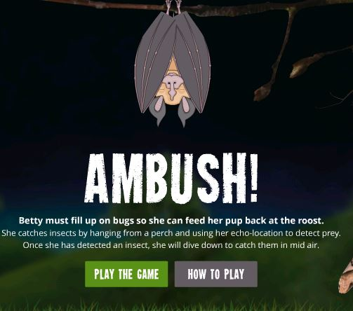 Bat Ambush game