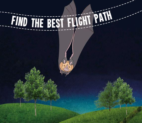 Flight Path game